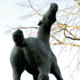 Draaiend paard