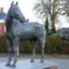 Paard - Folkert S.  Reitsma